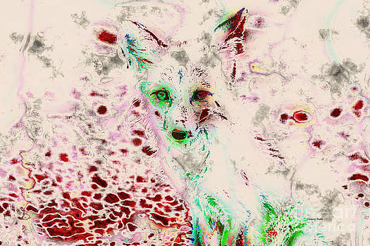 Ghost Fox Eyes by Claire Bull
