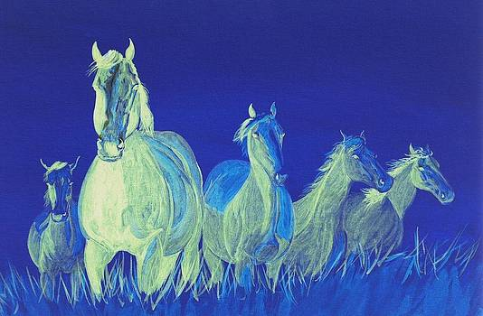 Ghost Horses by Cynthia Sampson