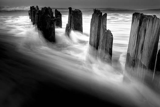 Ghosts by Tim Drivas