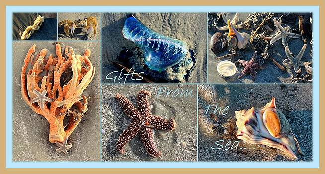 Rosanne Jordan - Gifts From The Sea Collage