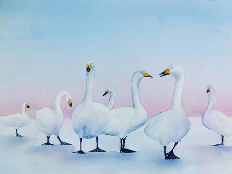 Giggling Gaggle of Geese by Judy Meng
