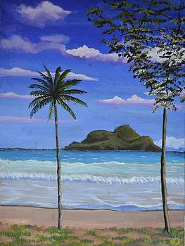 Gilligans Island 1 by P Dwain Morris