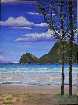 Gilligans Island 3 by P Dwain Morris