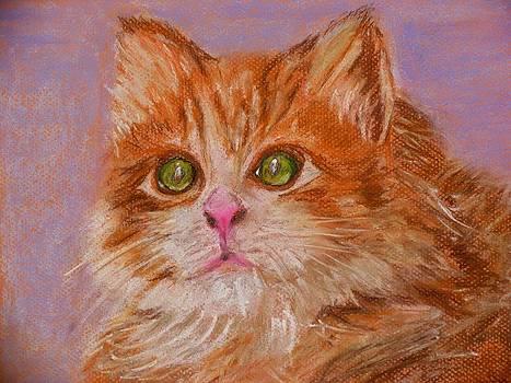 Ginger by Galina Khlupina