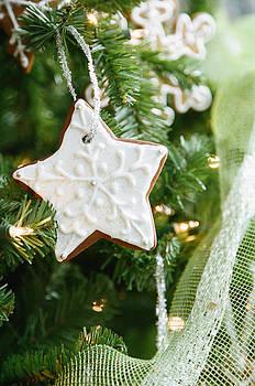 Gingerbread Star by Mary  Smyth