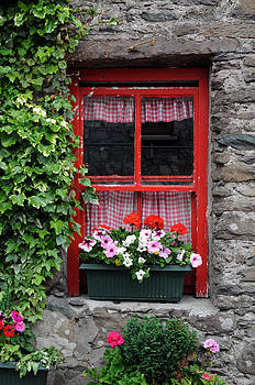 Gingham Curtains by Sharon Sefton