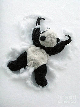 Ginny The Baby Panda Making A Snow Angel by Ausra Huntington nee Paulauskaite
