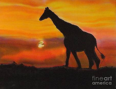 Giraffe at Sunset by Diane Maley