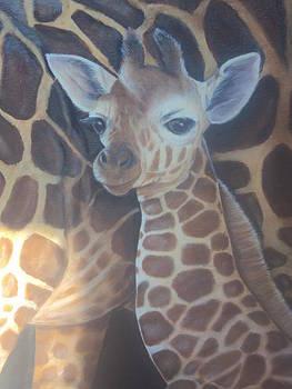 Giraffes by Virginia Butler