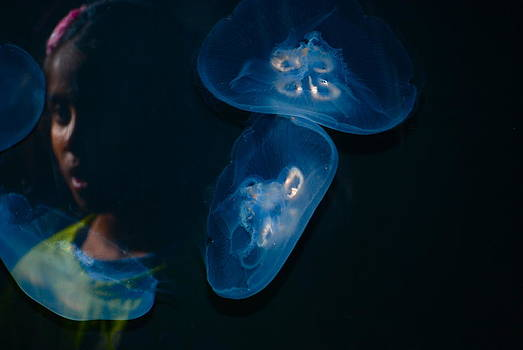 Girl and Jelly Fish by Jeffrey Cohen
