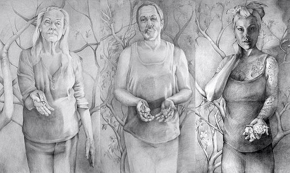 Giver Series by Julie Orsini Shakher