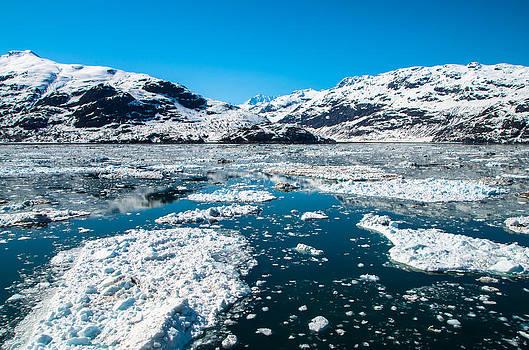 Marilyn Wilson - Glacier Bay