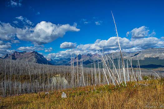 Glacier Mountains by Ranjana Pai