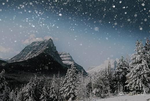 Glacier Winter Wonderland by Jens Larsen