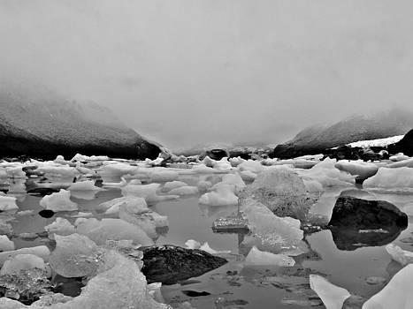 Glaciers  by Sabrina Vera