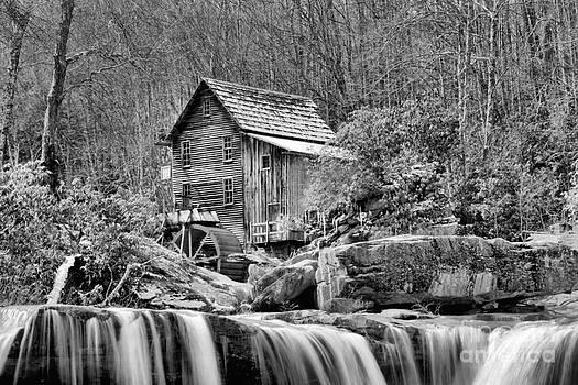 Adam Jewell - Glade Creek In Black And White