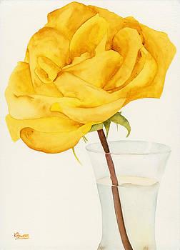 Ken Powers - Glass Vase and Rio Samba