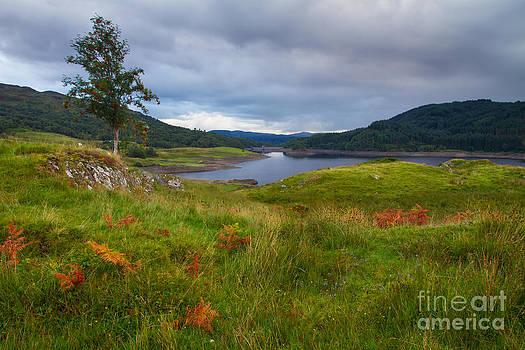 Glen Finglas Reservoir in the autumn Scotland by Gabor Pozsgai