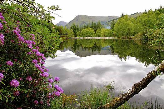 Glencoe Lochan @Scotland by Donald Chen