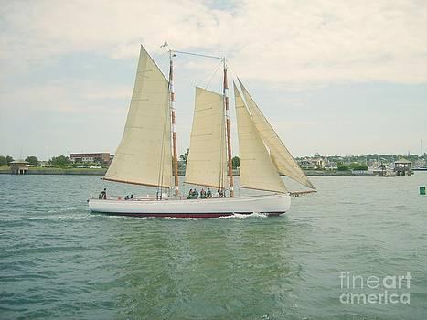 Gliding in Full Sail by Spirit Baker