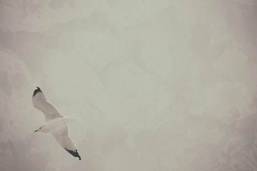 Karol Livote - Gliding Thru Life