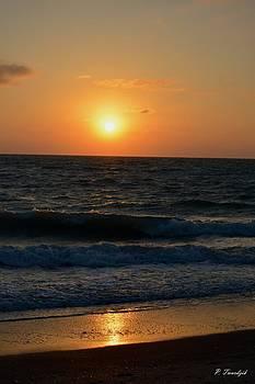 Patricia Twardzik - Glimmering Sun on the Water