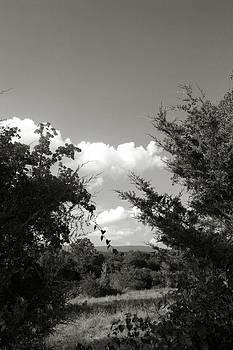 Nina Fosdick - Glimpses of Heaven