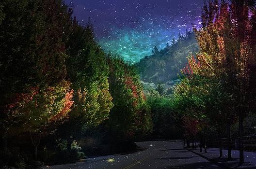 Glitter Lane by Heather L Wright