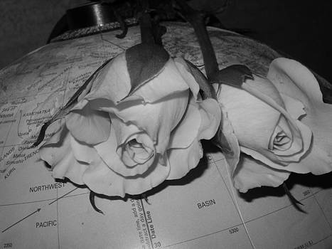 Sandra Foster - Global Monochrome Roses