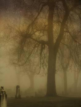 Gothicrow Images - Gloomy Fog