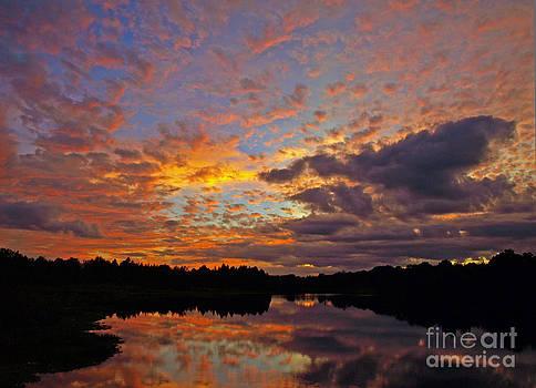 Glorious Florida Sunset by Virginia Zuelsdorf