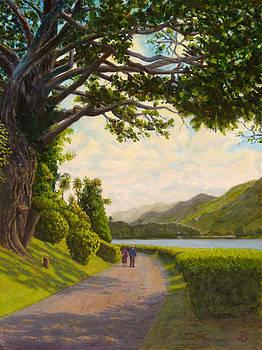 Glorious Galway by Joe Bergholm