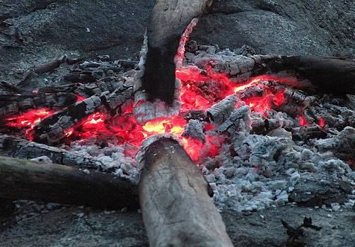 Glowing Campfire Coals by Brian Chase