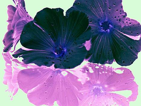 Glowing Reflective Flowers by Laura Lovell