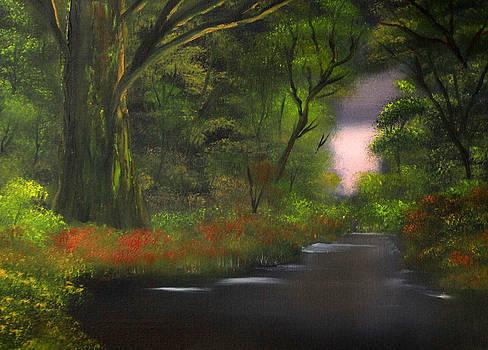Gnarled Oak in the Forest by Cynthia Adams