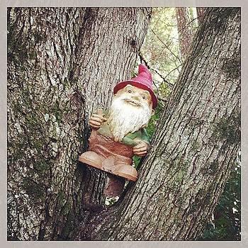 Gnome-adic by Melissa Payne