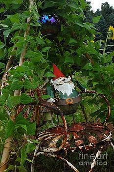 Gnomes and VInes by Christiane Hellner-OBrien