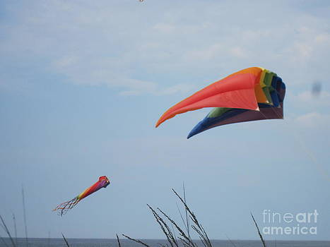 Go Fly A Kite by Donna Cavender