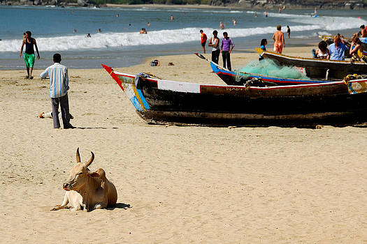 Goan Beach by Stefan Carpenter