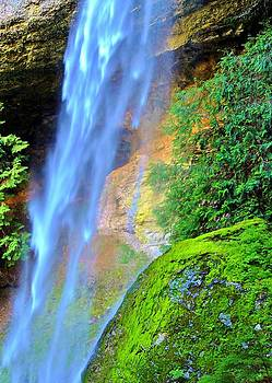 Goat Creek Falls by Vivian Markham