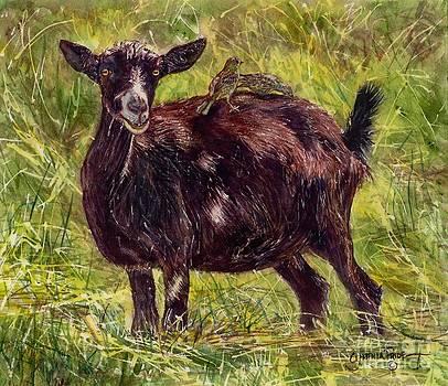 Goat Piggybackers by Cynthia Pride