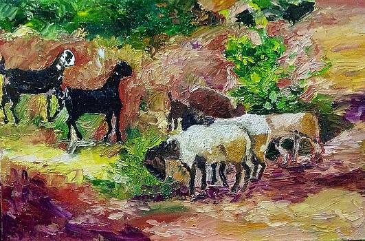 Aditi Bhatt - Goats