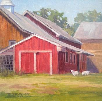 Goats At Play by Teresa Tromp