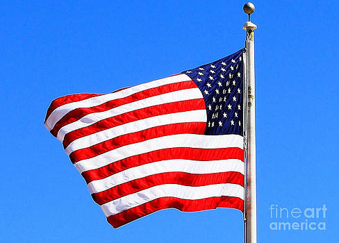 God Bless America by Judy Palkimas