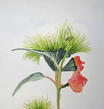 Flowering Gum Tree by Elvira Ingram