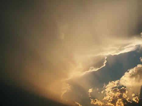 Gods Light by Sue Midlock