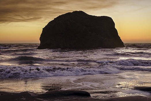 Gold Beach Coast by Blanca Braun