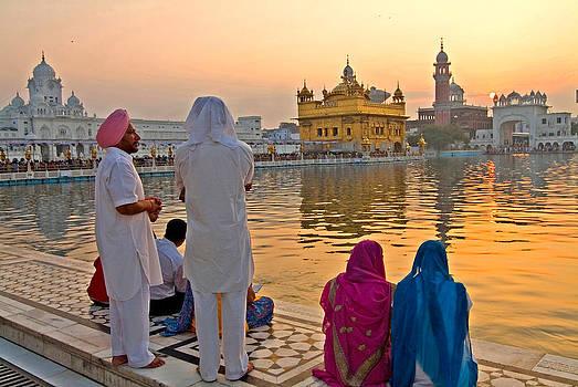 Devinder Sangha - Gold everywhere