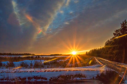 Gold Hour Sun Star in Winter by Beth Sawickie