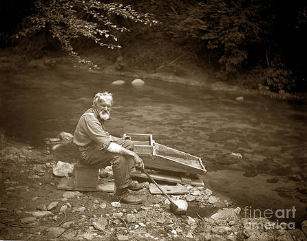 California Views Mr Pat Hathaway Archives - Gold miner with Gold Panning Rocker California circa 1900